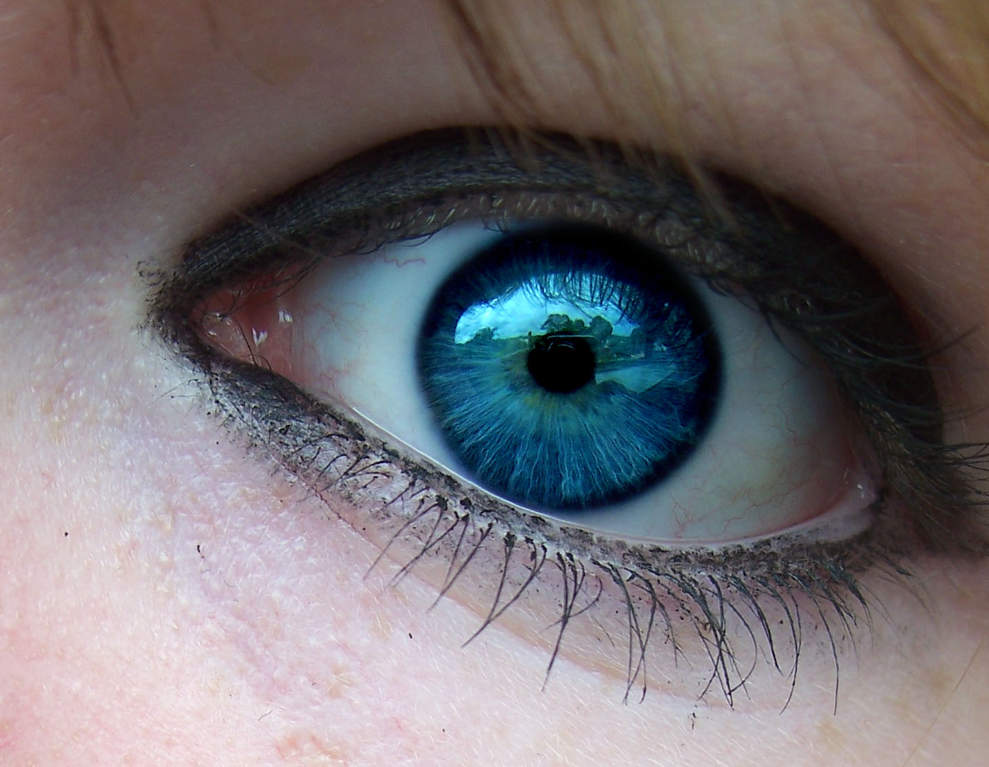 Top 5 types of eye colors human have
